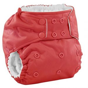 Rumparooz Best Cloth Diaper